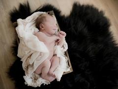 newborn babyfoto1